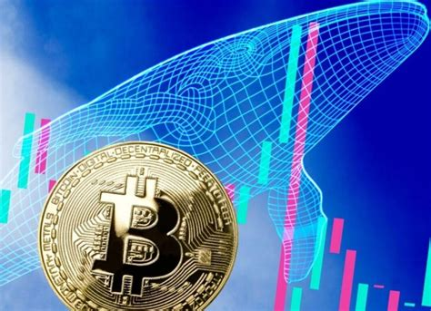 Dollar, at least in a relative sense. Bitcoin Price Falls Again: Record Sales from Some Miners! - Somag News