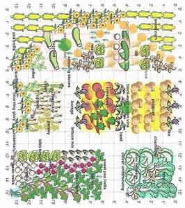 Partner Planting Grid