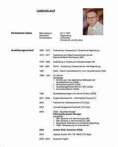 Lebenslauf muster schuler transition plan templates for Lebenslauf sch u00fclerpraktikum 9 klasse