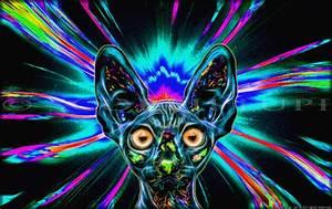 Hypnotic Gif By ScorpiiLupi On DeviantArt