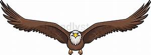 Front View Bald Eagle Flying Cartoon Clipart Vector ...