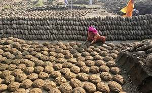 Cow Dung Patties Are Selling Like Hot Cakes In India. Here ...