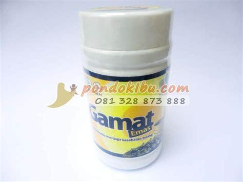 kapsul gamat emas antiseptik tradisional untuk mengatasi
