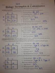 Incomplete and Codominance Worksheet Answer Key