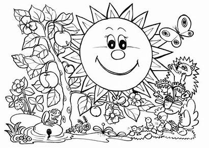 Coloring Nature Pages Plants Sun Printable Printables