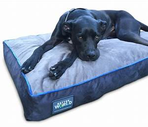 senior dog beds senior dog moments dog beds and costumes With best dog beds for senior dogs