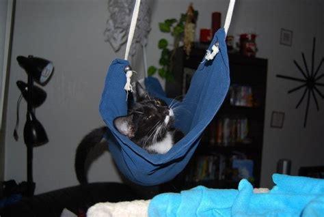 cat hammock diy cat hammock 183 how to make a pet bed 183 needlework on cut