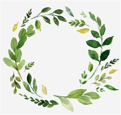 Greenery Watercolor Clipart Transparent Library Buckle Clipground