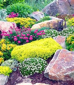Stauden Für Halbschatten : steingarten mix happy flowers 1a qualit t baldur garten ~ Frokenaadalensverden.com Haus und Dekorationen