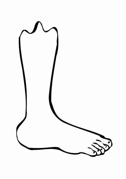 Coloring Foot Pages Printable Popular
