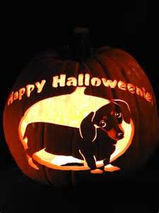 Dachshund Pumpkin Template by Picture Of A Dachshund Dachshund Pumpkin Stencil
