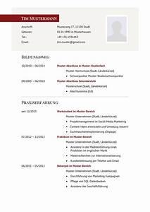 Bewerbung Als Führungskraft : lebenslauf muster f r f hrungskraft lebenslauf designs ~ Markanthonyermac.com Haus und Dekorationen