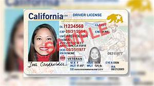 DMV to Begin Offering REAL ID Driver's Licenses, ID Cards ...