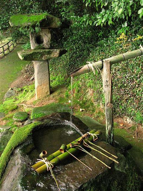 japanese green garden moss purification water