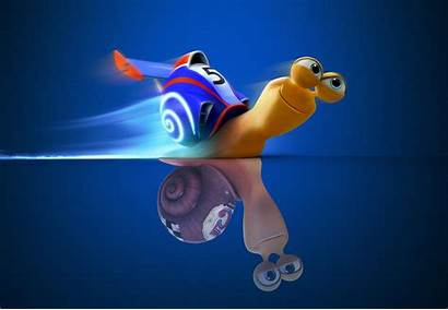 Desktop Snail Lustig Wallpapers Funny Hintergrund Cool