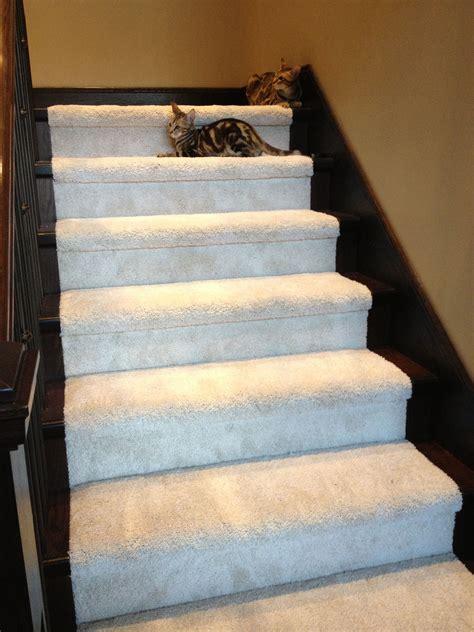 Mohawk Smartstrand Carpet For Stairs Taraba Home Review