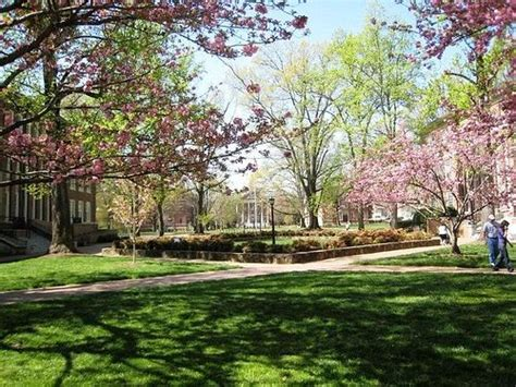 Quad On Campus Heavenly Unc Favorite Places And