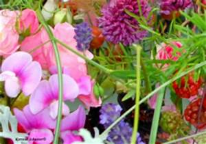 Welche Blumen Kann Man Essen : welche bl ten kann man essen suche rezepte mit essbaren ~ Watch28wear.com Haus und Dekorationen