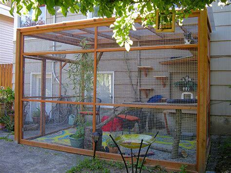 catio ideas diy catio plans catio spaces