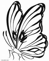 Butterfly Coloring Pages Butterflies Printable Drawing Monarch Colouring Cocoon Line Cool2bkids Print Getcolorings Caterpillar Clipartmag Getdrawings sketch template