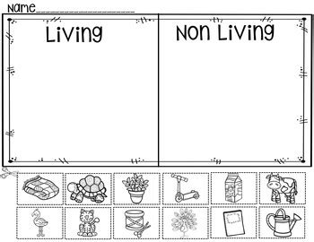 living and nonliving things worksheets living or non living a pocket chart activity and worksheets by judy tedards