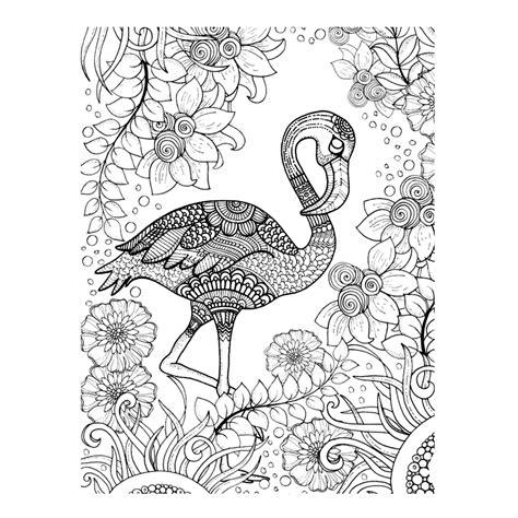 Flamingo Kleurplaat by Flamingo Kleurplaten Voor Volwassenen