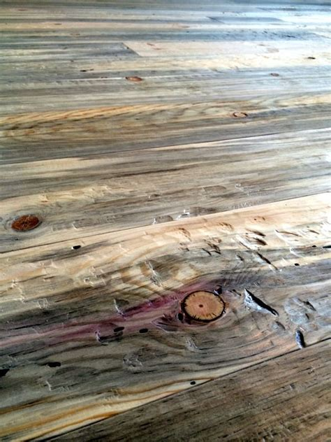 78 images about beetle kill blue pine on pinterest