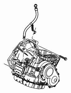 2008 Dodge Grand Caravan Indicator  Transmission Fluid