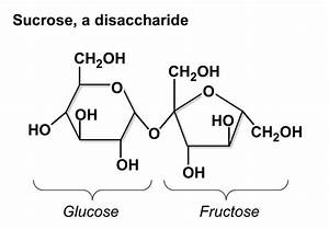 How Do Determine The Structure Of A Carbohydrate