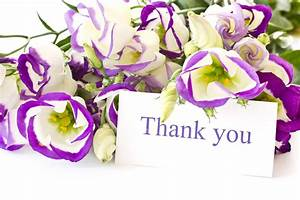 Images Of Thank You Flowers Wallpaper Picture with HD ...