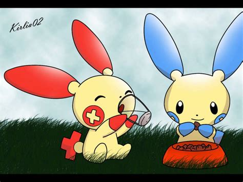 Plusle And Minun Tribute