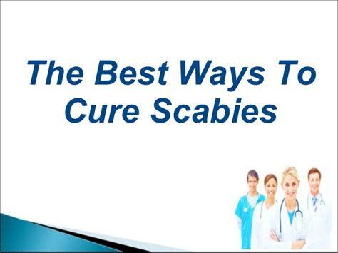 The Best Ways To Cure Scabies