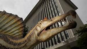 spinosaurus takes nat geo