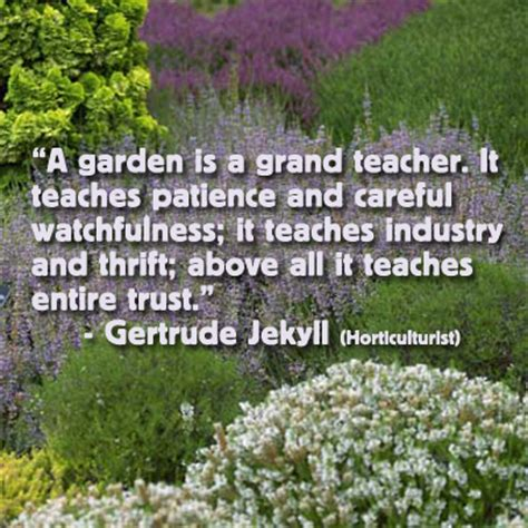 garden quotes quotes about gardening and teaching quotesgram