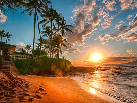 hawaii exotic wallpaper hd sea sand beach palms green sky