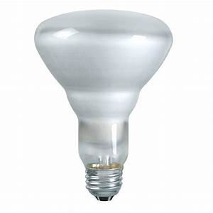 Philips duramax watt incandescent br indoor flood
