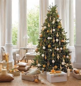 fascinating decorating ideas small indoor tree rugdots