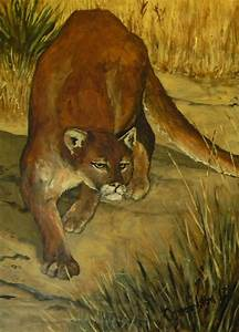 Mountain Lion Painting by John Connaughton