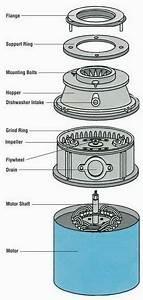 Wiring Diagram For A Garbage Disposal