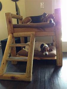 how to build a bunk bed for your pets diy projects for With best made dog beds