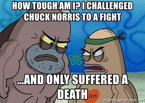 How Tough Am I Meme - how tough am i i challenged chuck norris to a fight and only suffered a death salty