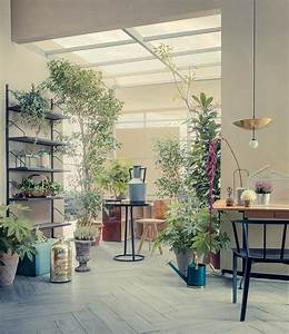 House plants interior design ideas for Interior decorating with indoor plants