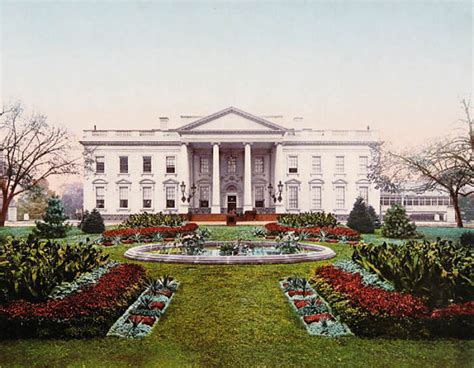 white house  museum photo