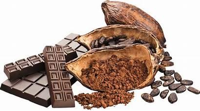 Cacao Chocolate Transparent