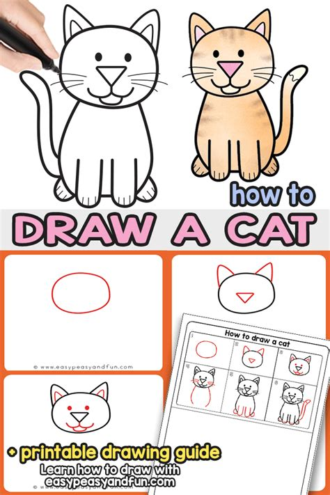 draw  cat step  step cat drawing instructions