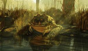 Radtoad - The Vault Fallout Wiki