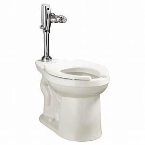 Flushometer Toilets