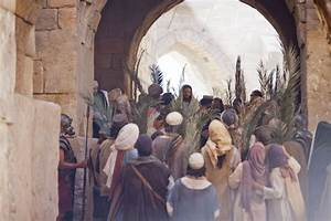 Opinions on Triumphal entry into Jerusalem