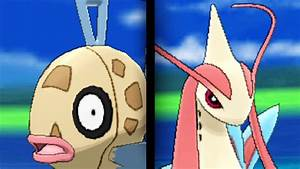 How & Where to catch/get: Evolve Feebas into Milotic in ...
