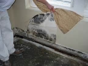 How To Remove Ceiling Wallpaper by Uncategorized Mr Fix It Mike Home Services